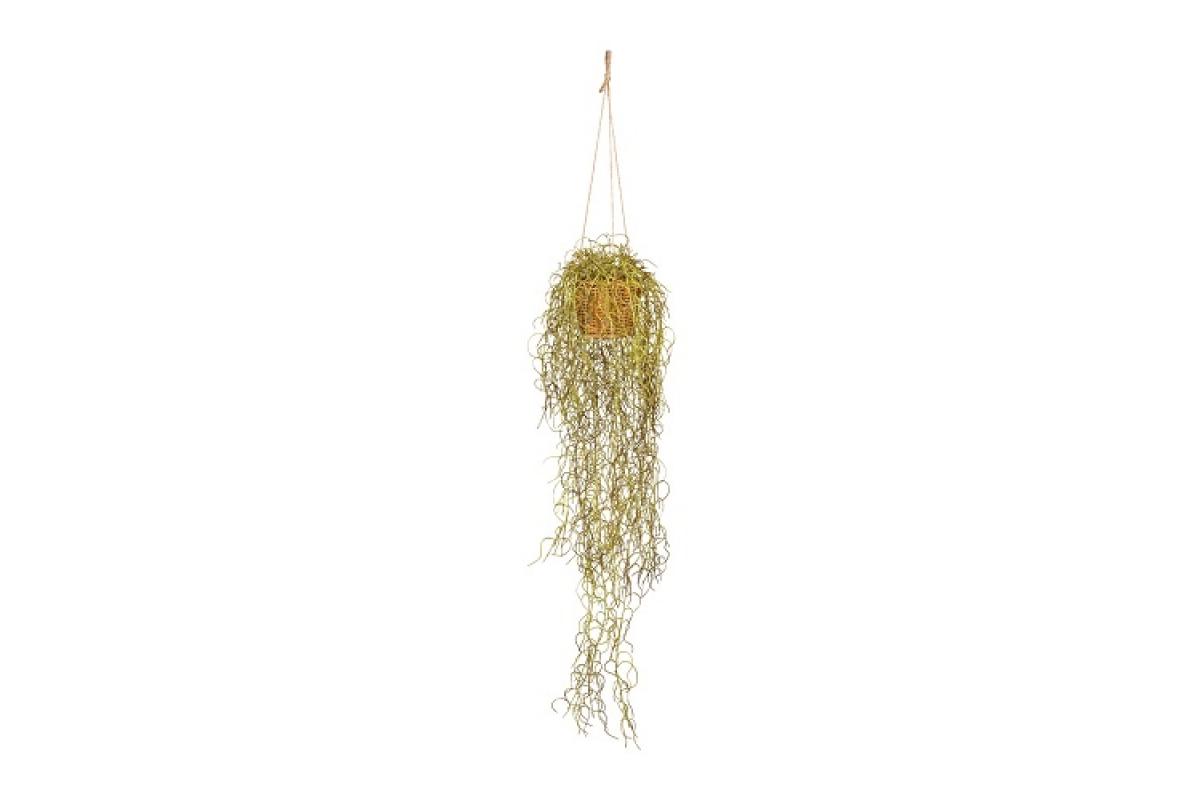 Тилландсия искусственная зелено-коричневая подвесная 70 см