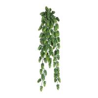 Хмель (шишки) искусственный зеленый 75 см
