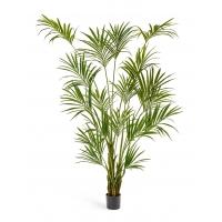 Пальма Кентия (Ховея) искусственная 260 см