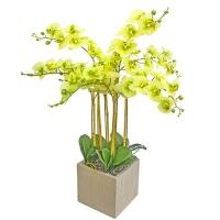 Орхидея Фаленопсис 7 веток искусственная зеленая в керамическом кашпо куб 100 см