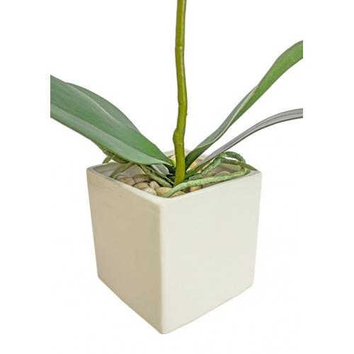 Орхидея Фаленопсис 1 ветка искусственная белая в фарфоровом кашпо 50 см - Фото 3