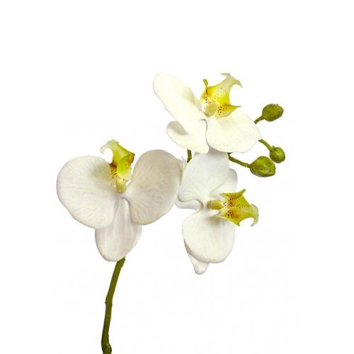 Орхидея Фаленопсис 1 ветка искусственная белая в фарфоровом кашпо 50 см - Фото 4