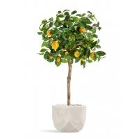 Лимонное дерево искусственное с плодами в бежевом кашпо 125 см