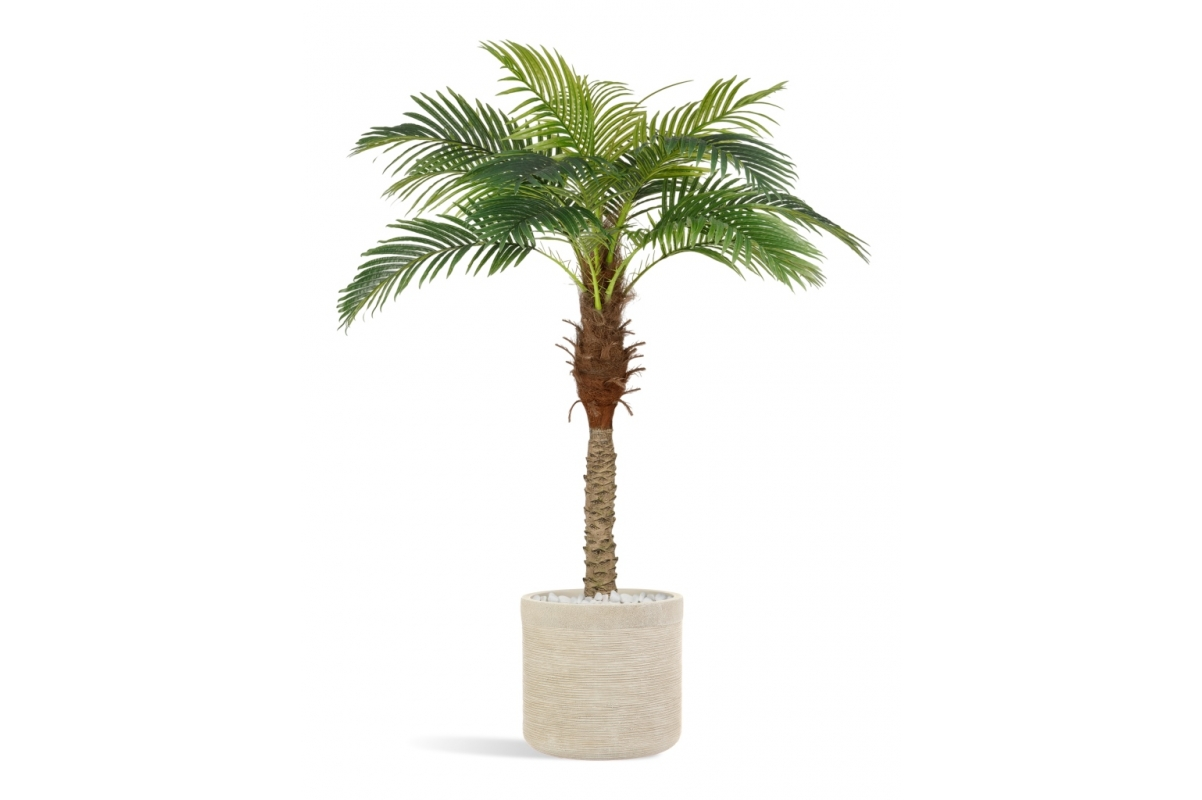 Пальма Финиковая Новая искусственная в кремовом кашпо 185 см