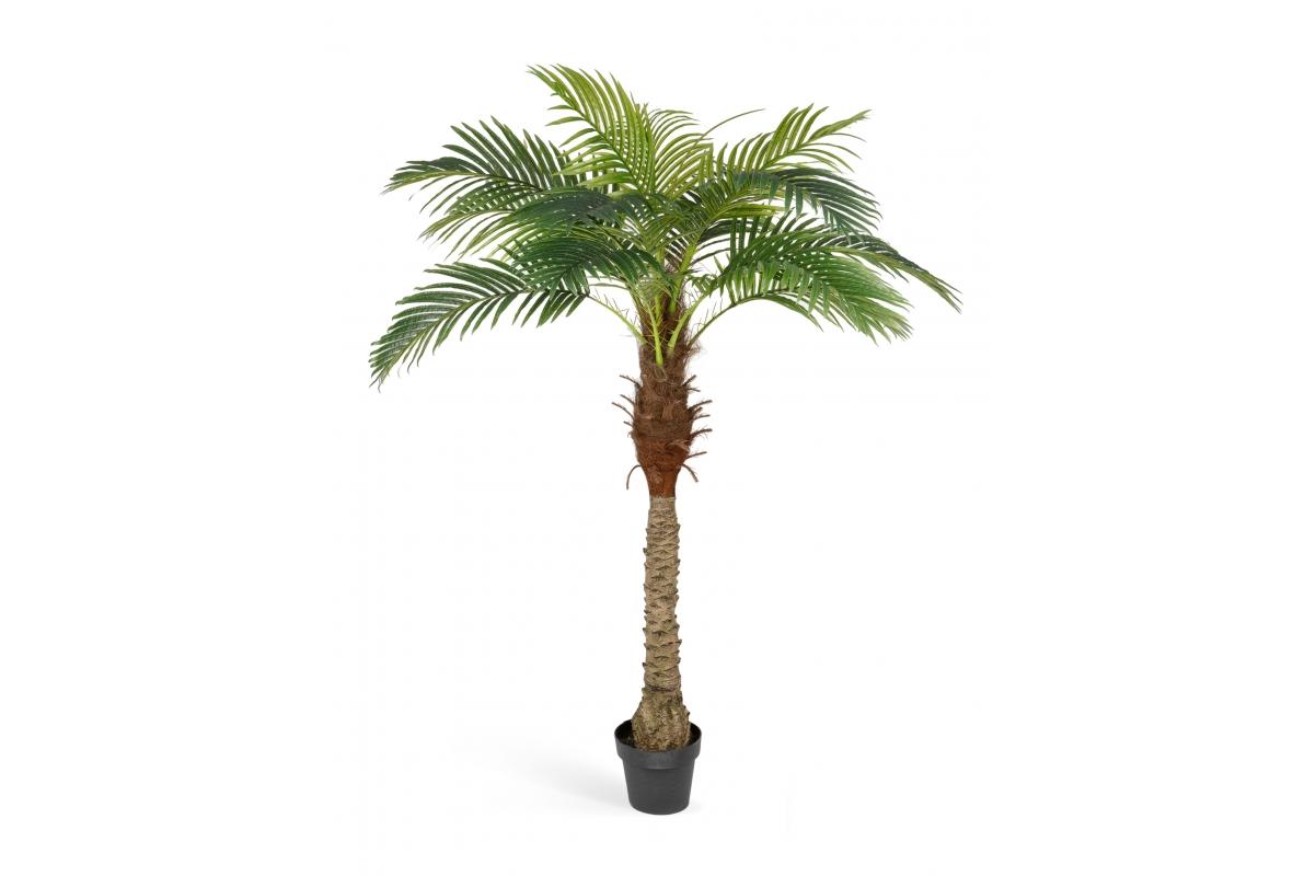 Пальма Финиковая Новая искусственная в кремовом кашпо 185 см - Фото 4