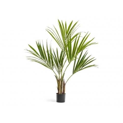 Пальма Кентия (Ховея) искусственная в бежевом кашпо 165 см - Фото 3