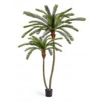Пальма Цикас двухствольная искусственная 250 см