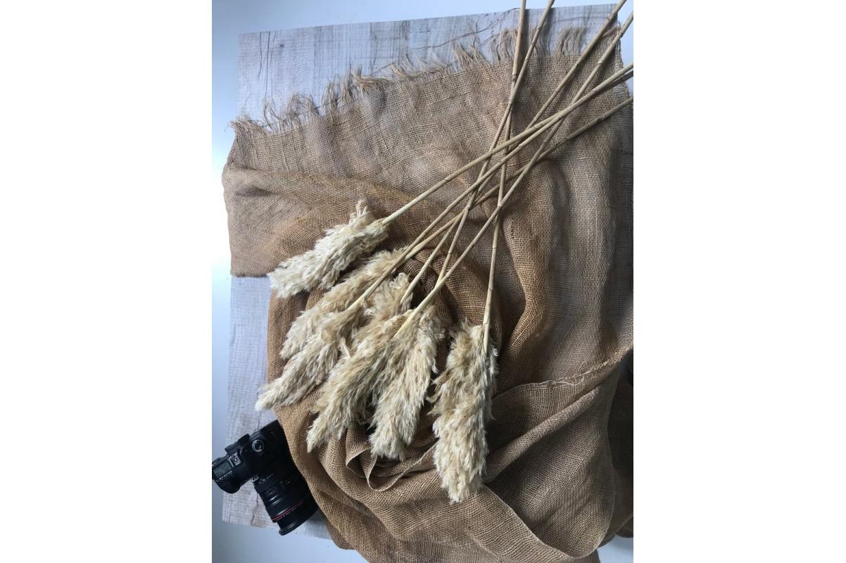 Пампасная трава (кортадерия) белая 12 колосков 83 см - Фото 7