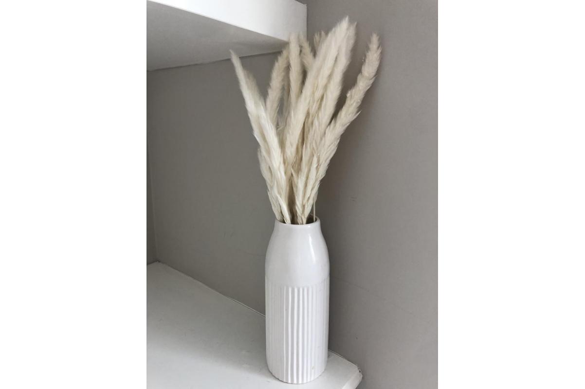 Пампасная трава (кортадерия) белая 12 колосков 83 см - Фото 9