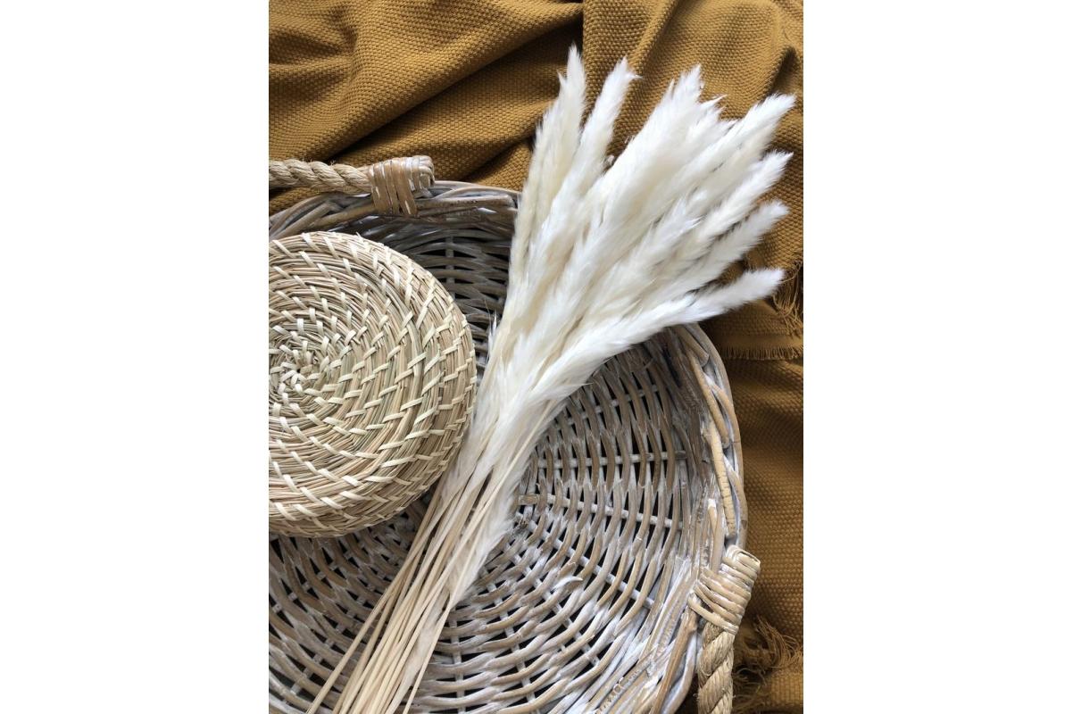 Пампасная трава (кортадерия) белая 12 колосков 83 см - Фото 2