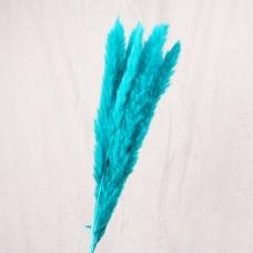 Пампасная трава (кортадерия) голубая 12 колосков 83 см