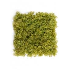 Мох Ягель искусственный светло-зелёный микс 25 x 25 см (коврик)