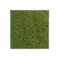 Мох Сфагнум Fuscum искусственный зеленый 100 x 100 см (полотно большое)