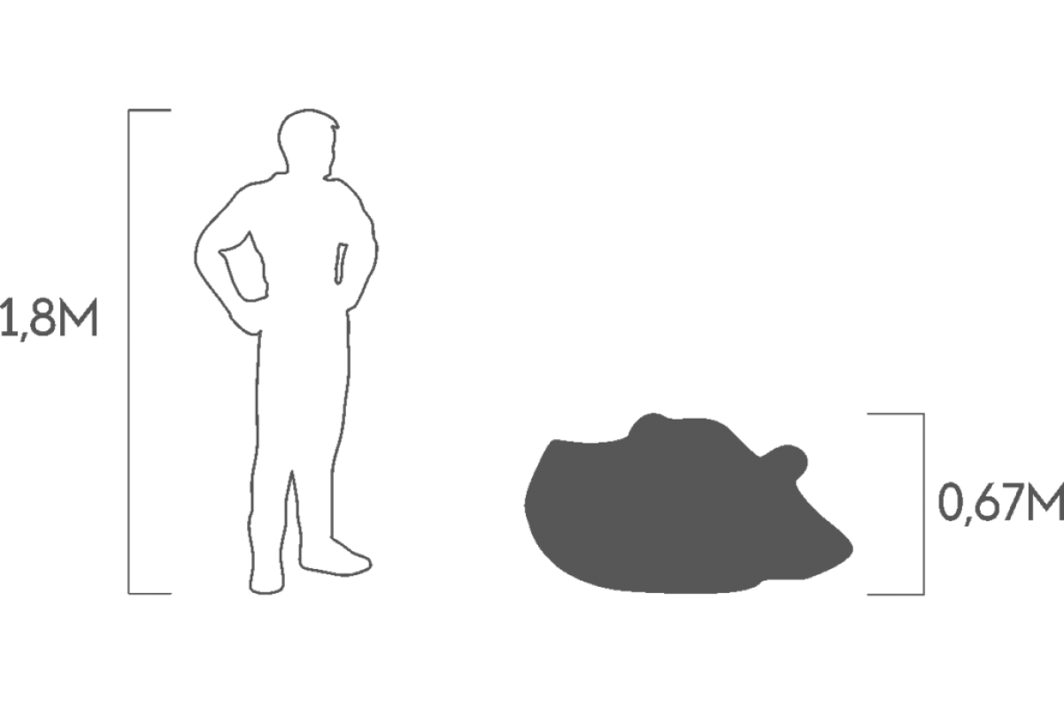 Топиари Бегемот в воде малый - Фото 3