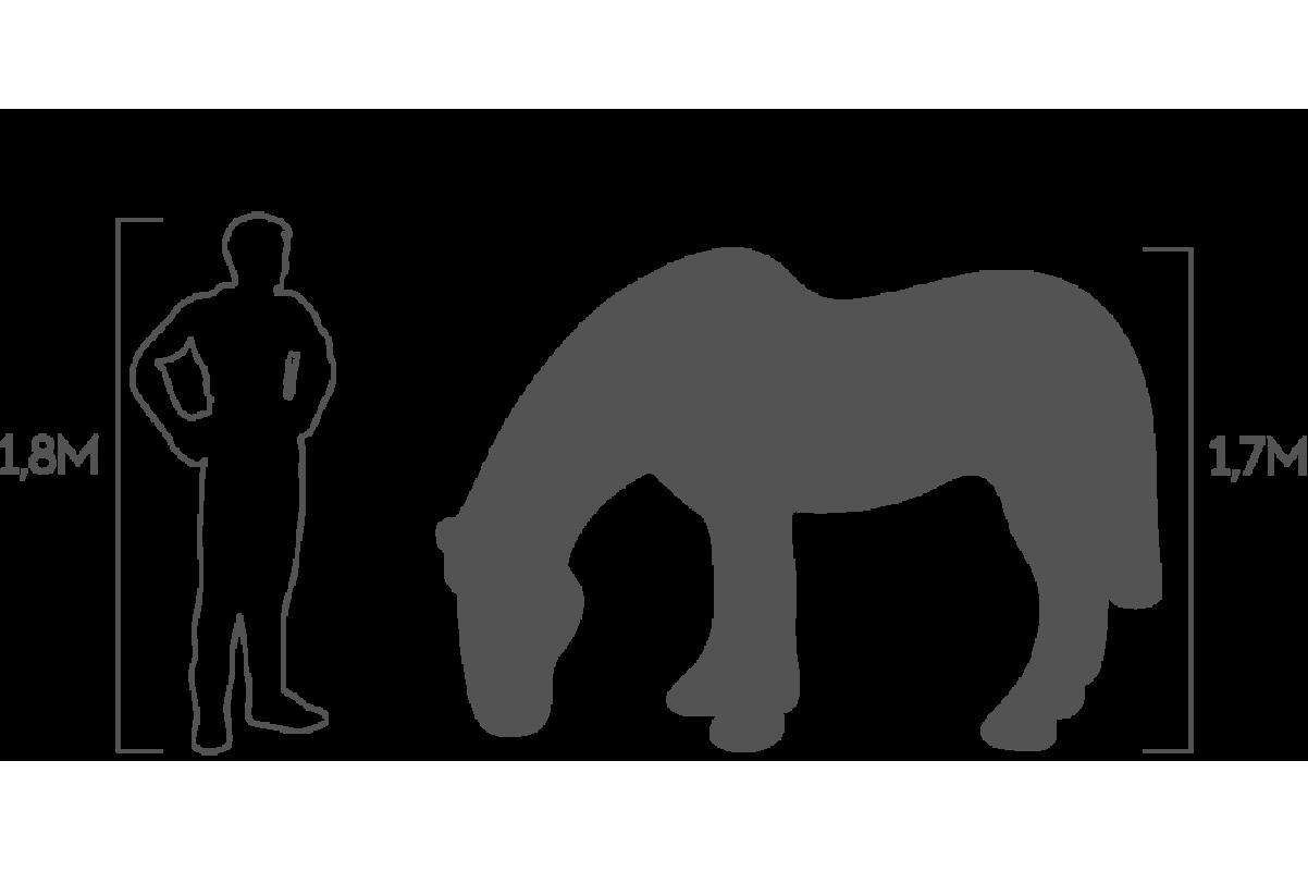 Топиари Лошадь на лугу - Фото 2