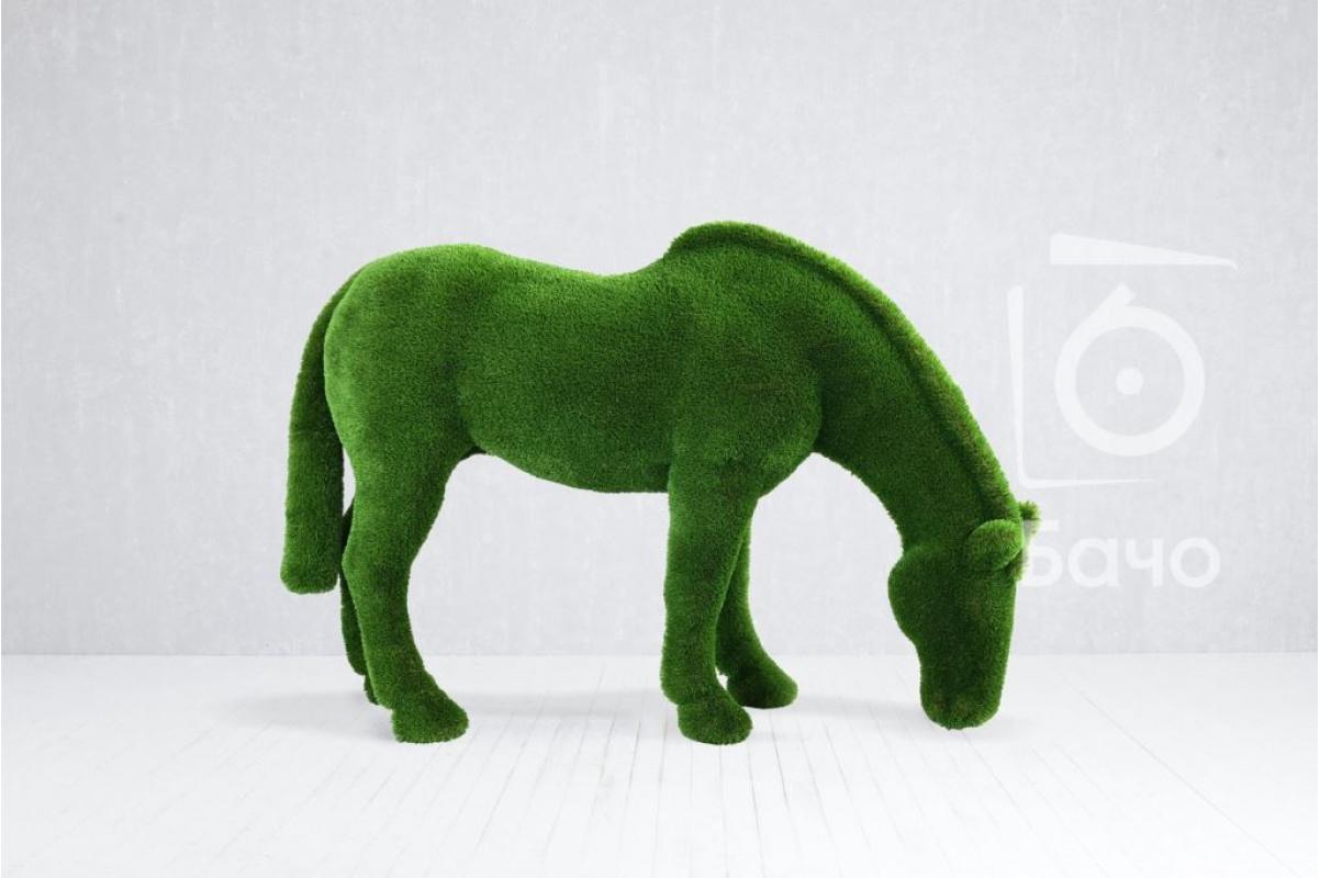 Топиари Лошадь на лугу - Фото 3