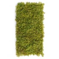 Мох Ягель искусственный зеленый микс с коричневым 25 x 50 см (коврик)