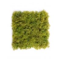 Мох Ягель искусственный зеленый микс с коричневым 25 x 25 см (коврик)