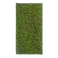 Мох Сфагнум Fuscum искусственный зеленый 50 x 100 см (полотно среднее)