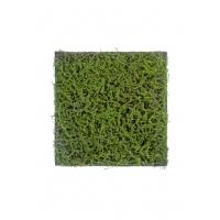 Мох Сфагнум Fuscum искусственный зеленый 50 x 50 см (полотно)