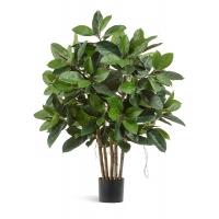 Фикус Эластика искусственный зеленый 120 см