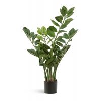 Замиокулькас куст малый искусственный зеленый 70 см
