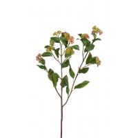 Ветвь Калликарпы искусственная зелено-бордовая 63 см
