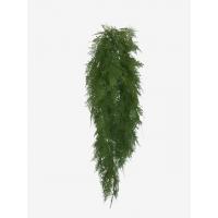 Аспарагус куст ампельный искусственный перистый зеленый 90 см