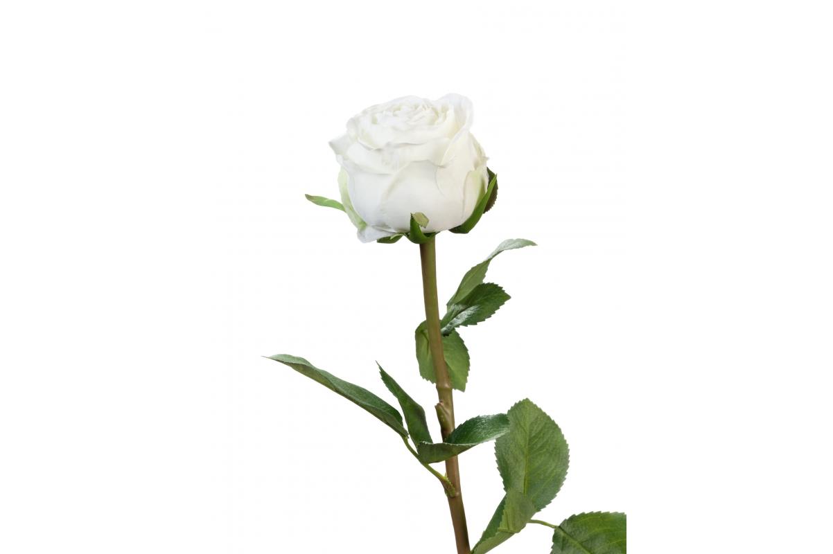 Роза Эспернаса искусственная белая 49 см