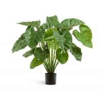 Алоказия Калидора куст искусственный зеленый 95 см