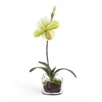 Орхидея Венерин башмачок в стекле с мхом, корнями, землей искусственная белый-лайм (Real Touch)