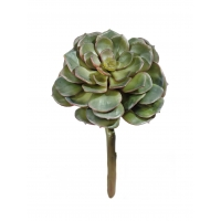 Суккулент Эхеверия искусственный зеленый 12 см (Real Touch)