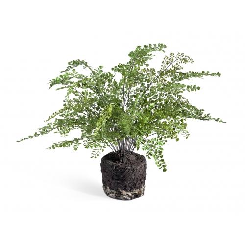 Папоротник Адиантум искусственный куст в земле с корнями 65 см