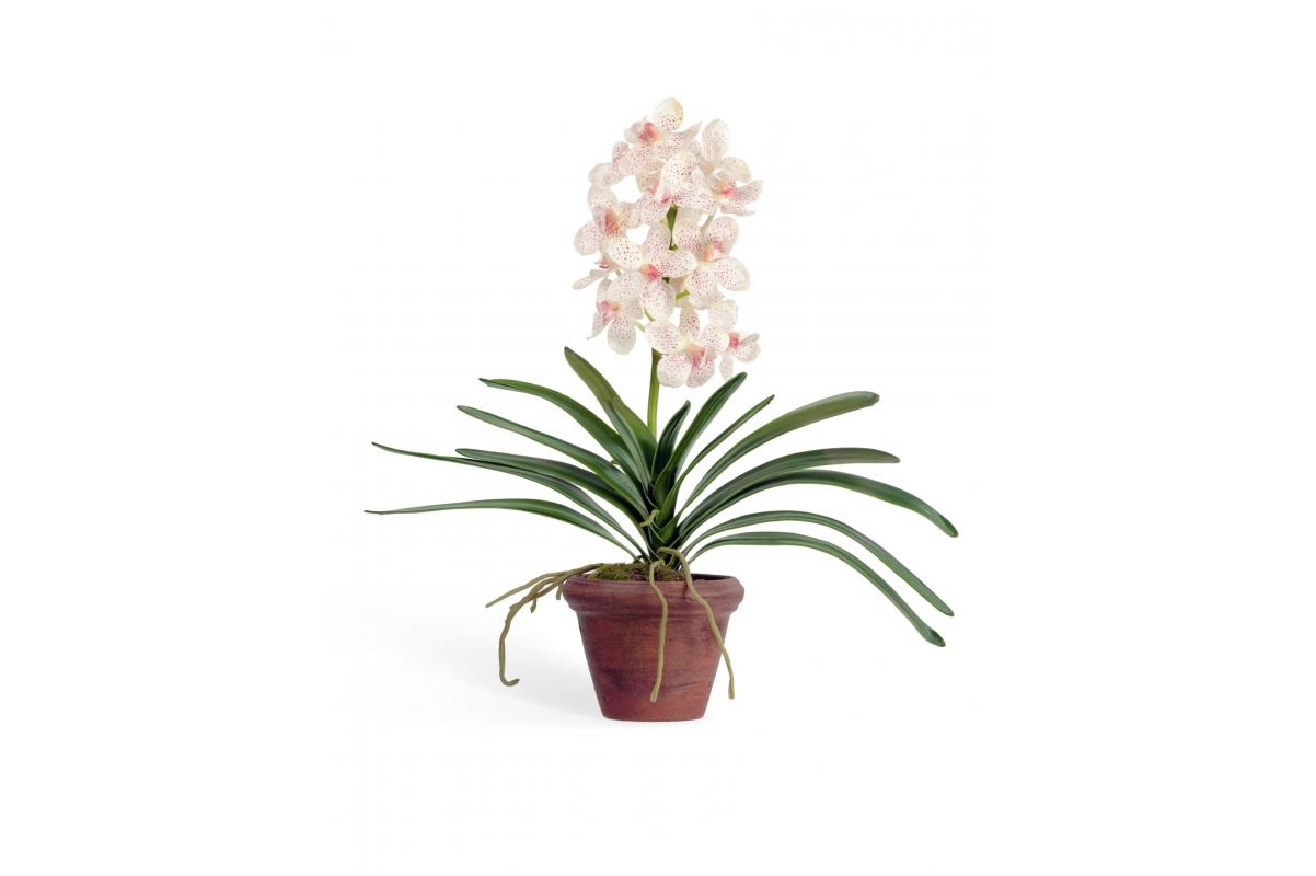 Орхидея Ванда искусственная кремово-розовая в кашпо 43 см (Real Touch)