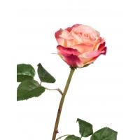 Роза Варди искусственная темно-малиновая 58 см