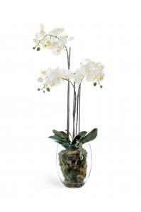 Композиция Орхидея Фаленопсис с мхом, корнями, землей искусственная белая 85 см (Real Touch)
