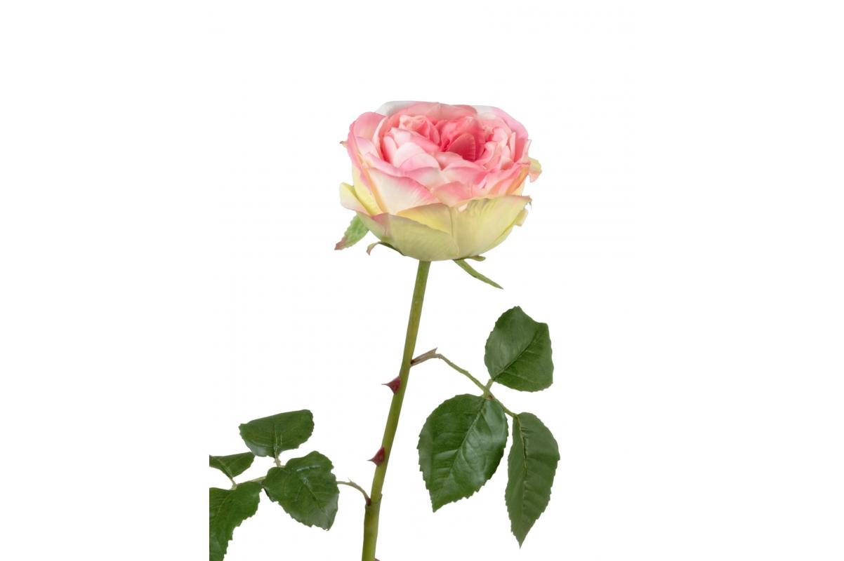 Роза Джема искусственная ярко-розовая с светлым лаймом 56 см
