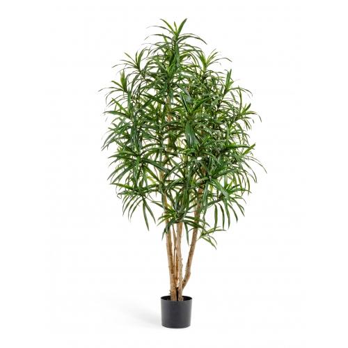 Драцена Анита искусственная зеленая