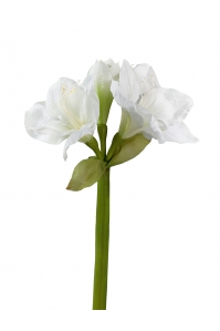 Амариллис искусственный белый 77 см