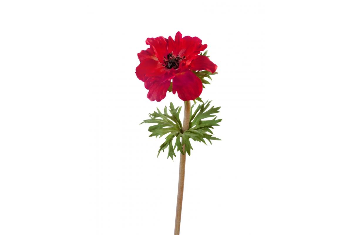 Анемон искусственный красно-бордовый 42 см