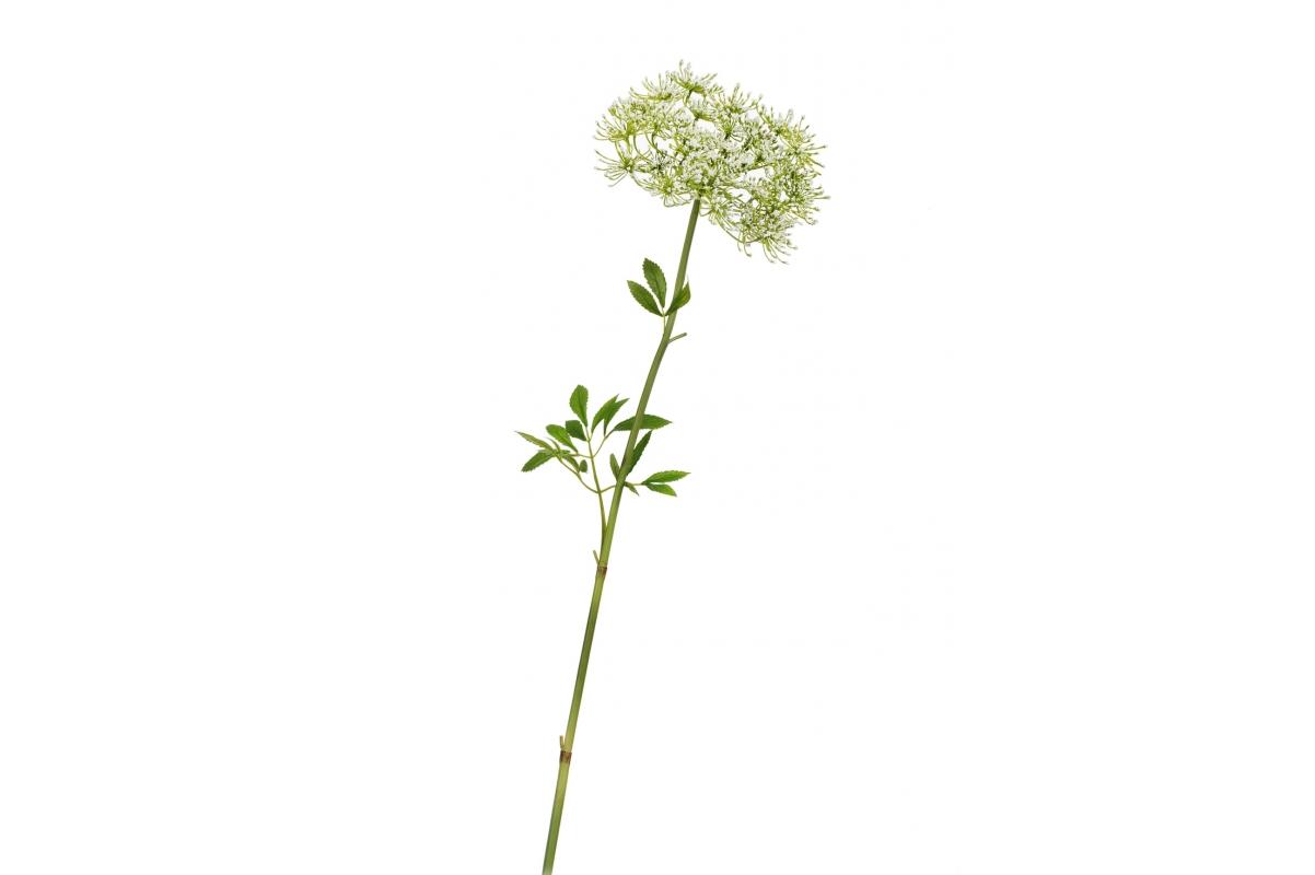 Анна королевская искусственная бело-зеленая 62 см