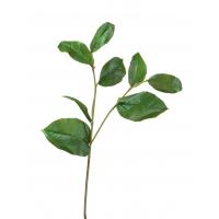 Ветвь Салала с зелеными листами искусственная 40 см
