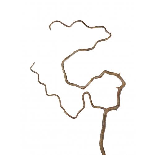 Ветка Салекса изогнутая светло-коричневая искусственная 52 см
