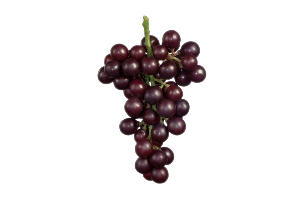 Виноград искусственный крупный круглый черный 22 см