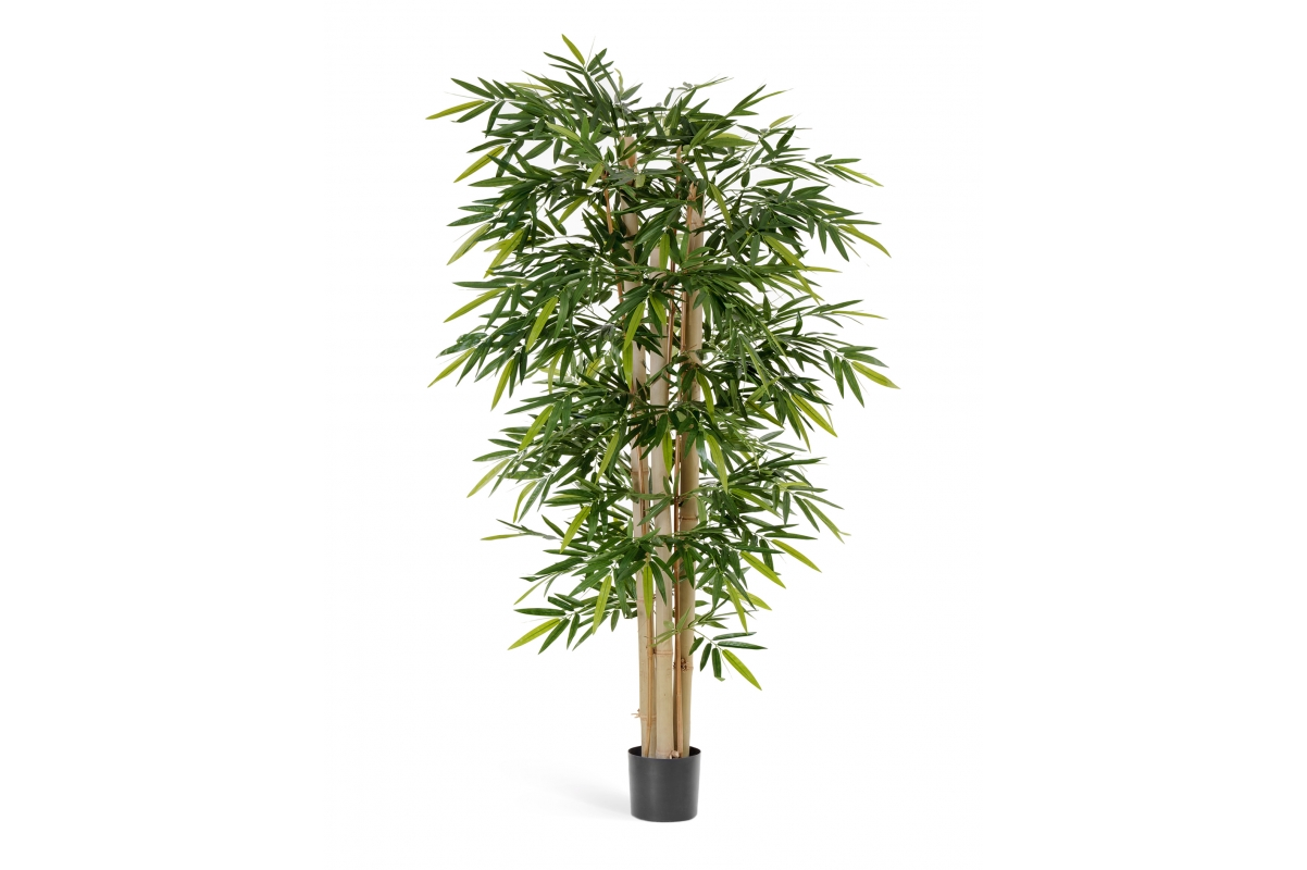 Бамбук искусственный Новый гигантский