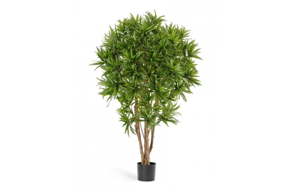 Драцена Рефлекса Ямайка искусственная зеленая 145 см