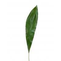 Лист Аспидистры искусственный зеленый 88 см