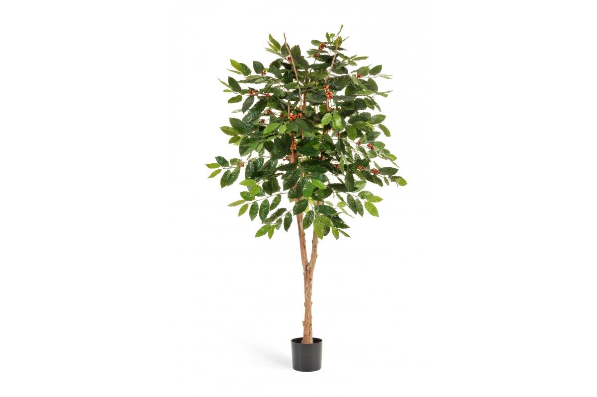 Кофейное дерево искусственное с плодами 180 см