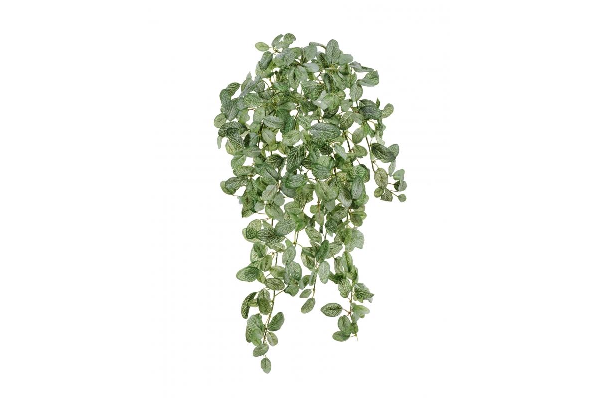 Фиттония Фрост искусственная бело-зеленая припыленная 45 см