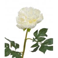 Пион махровый искусственный белый 60 см